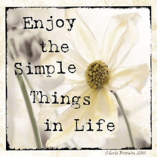 The Simple Things In Life Quote Daily Inspiration Quotes