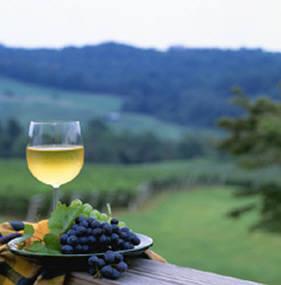 virginia-wine-tours